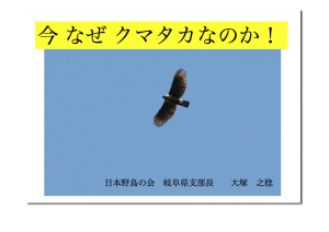 検証_クマタカ_大塚_20091224