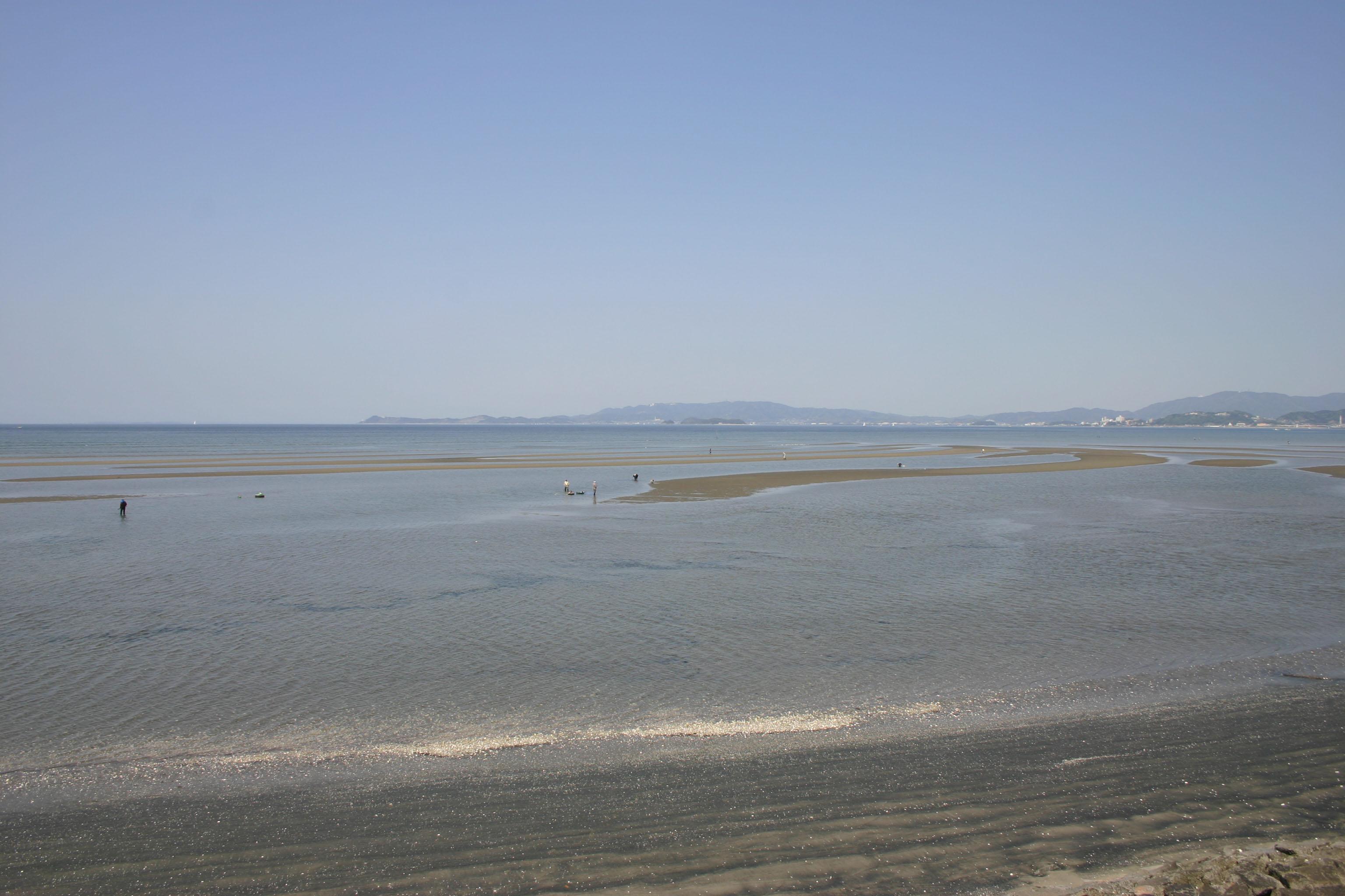 豊川が育む三河湾の幸