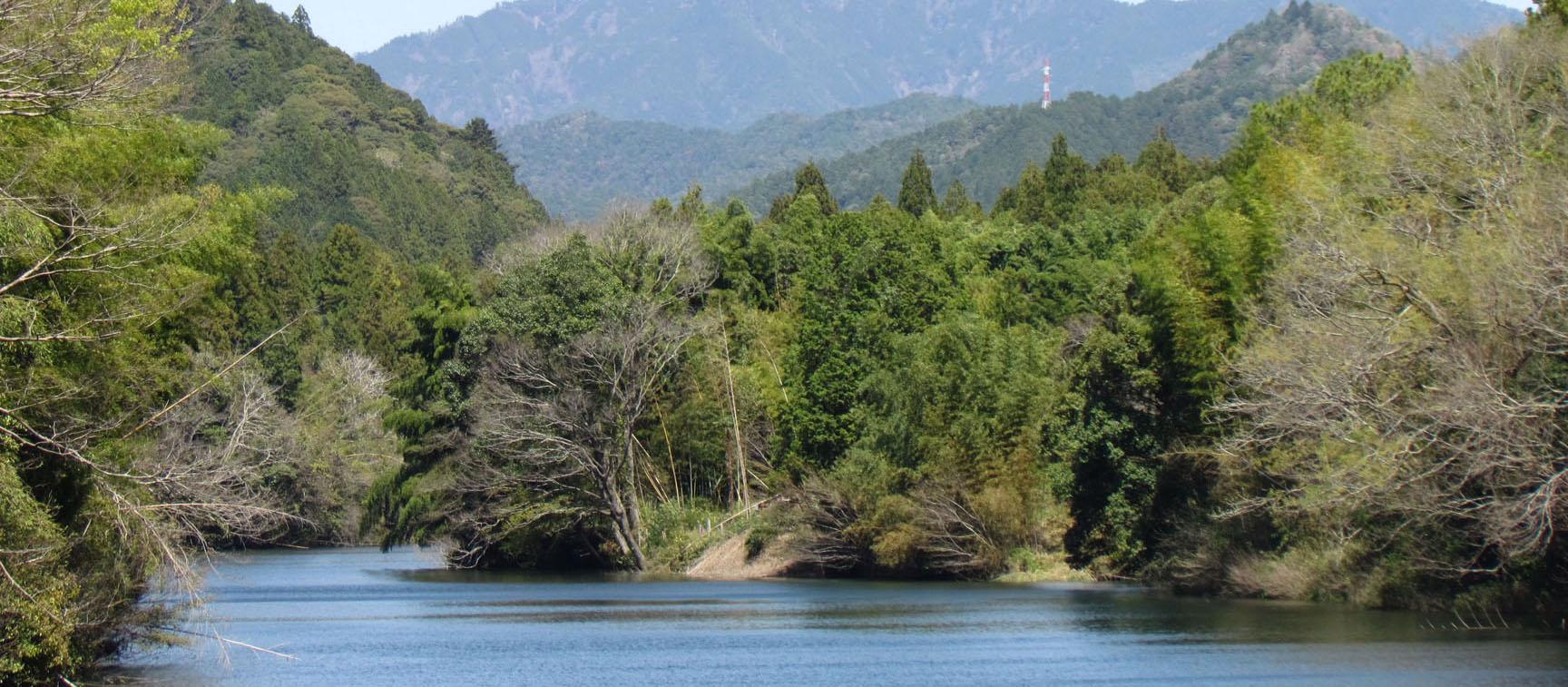 設楽ダムはムダ:森林の水源涵養機能